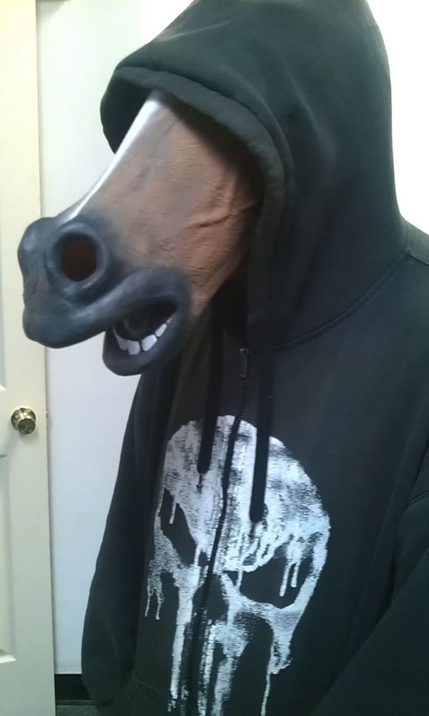 842ef3d26949bed8c9bb9dfb90110e48--horse-head-horse-mask.jpg