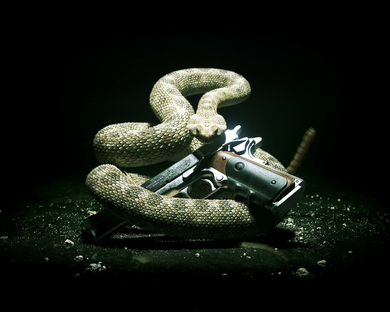 Creative_Wallpaper_The_snake_and_the_gun_030336_.jpg
