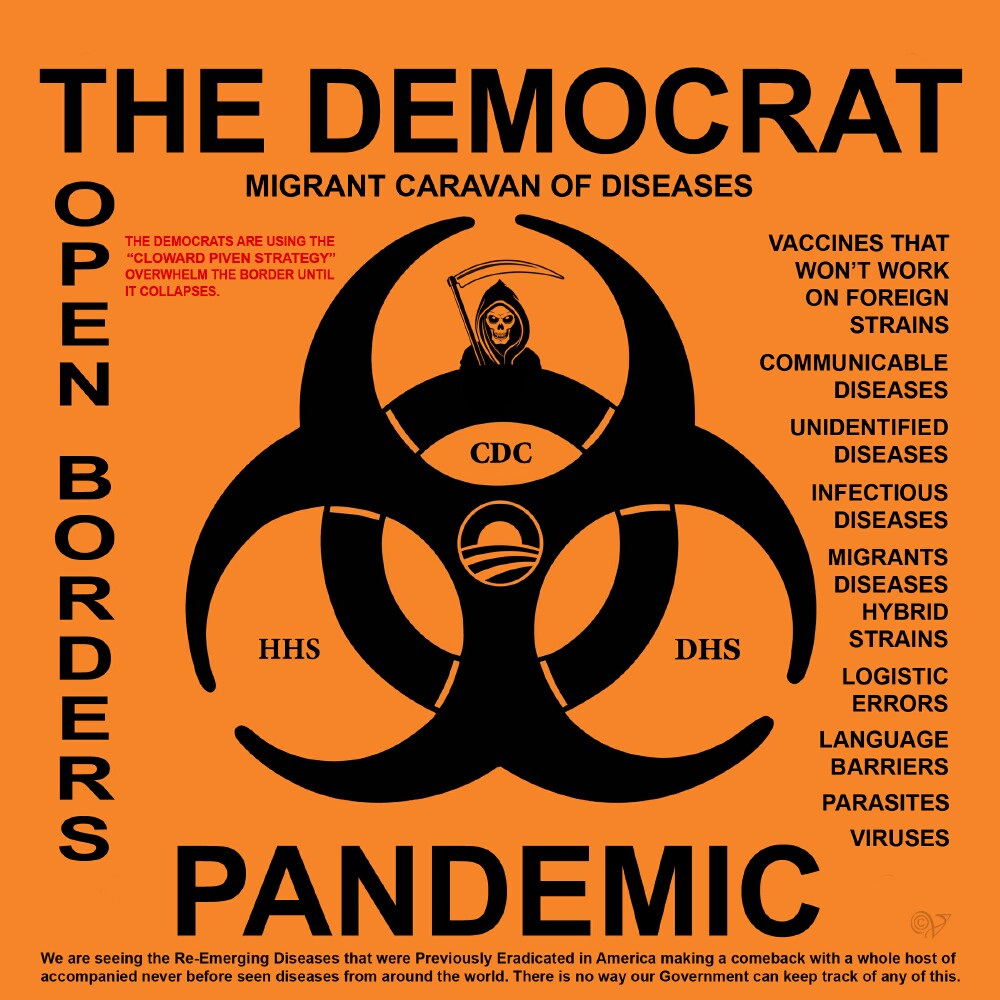 DEMOCRAT PANDEMIC - 2 MEDS .jpg