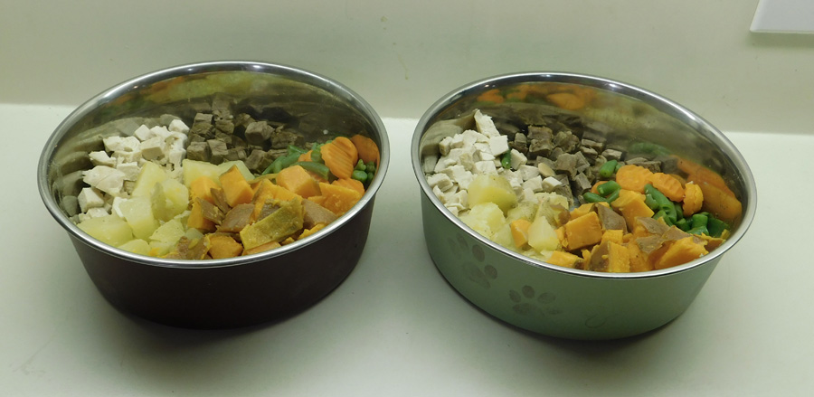 dog food for two.jpg