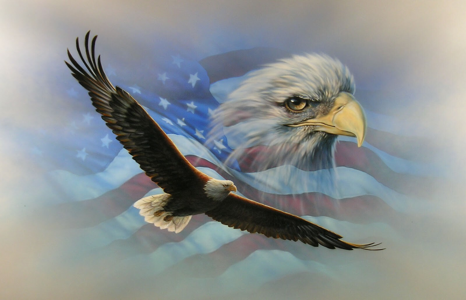 eagle_flag_copy_nrrm [DesktopNexus.com].jpg