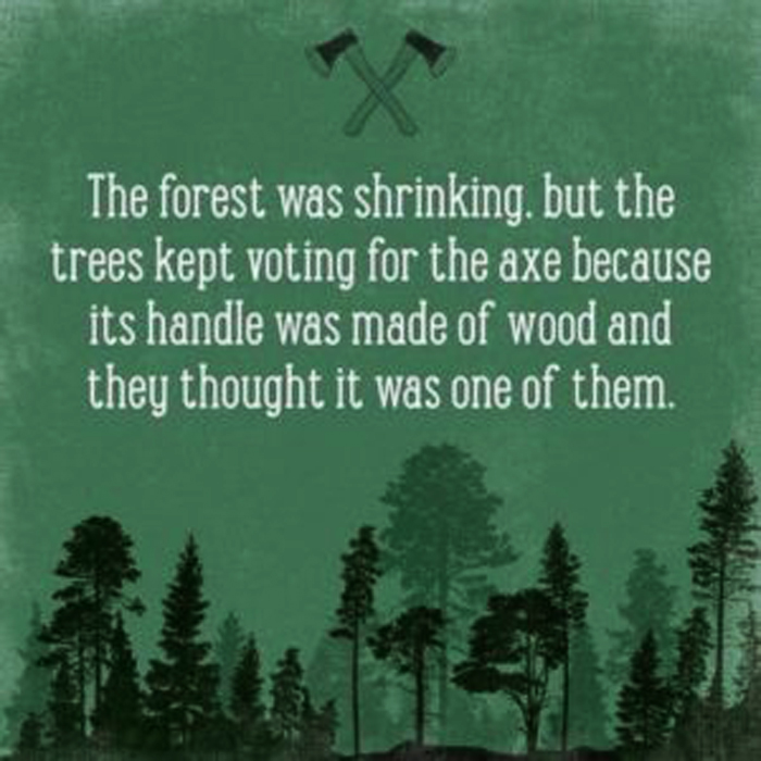 forest-votes-for-axe-meme.jpg