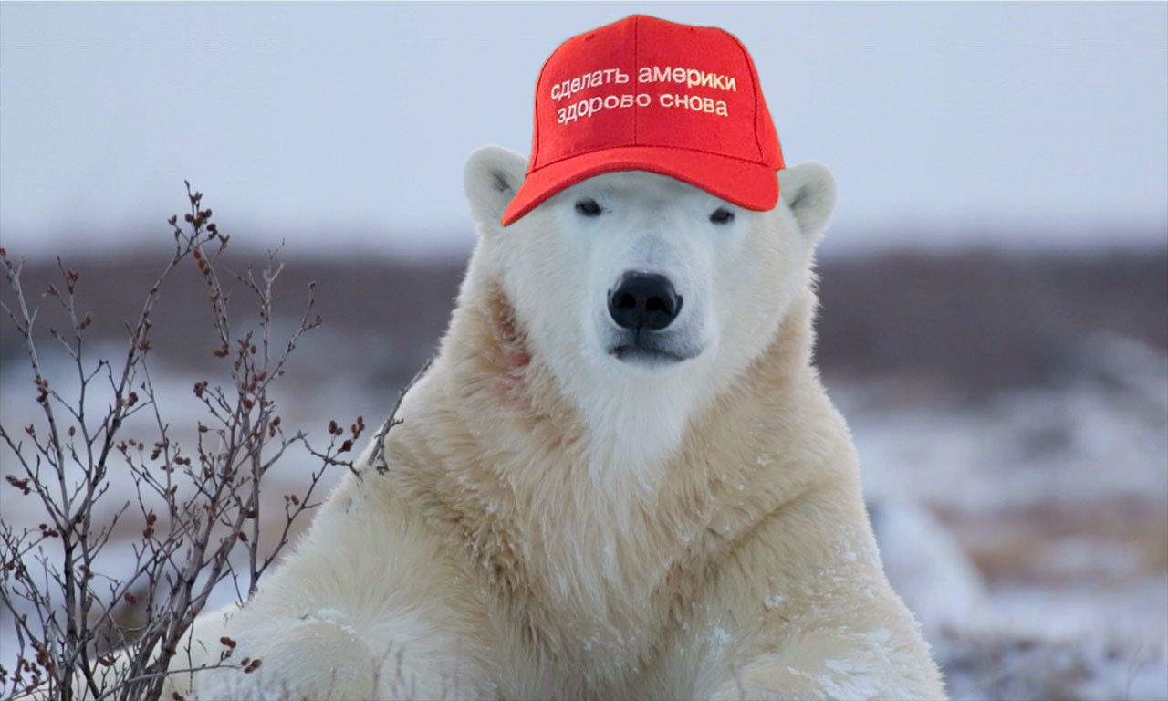 MAGA Hat polar-bear.jpg