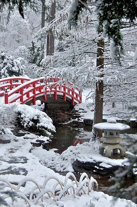 Red-Bridge-in-Frozen-Japanese-Garden.jpg