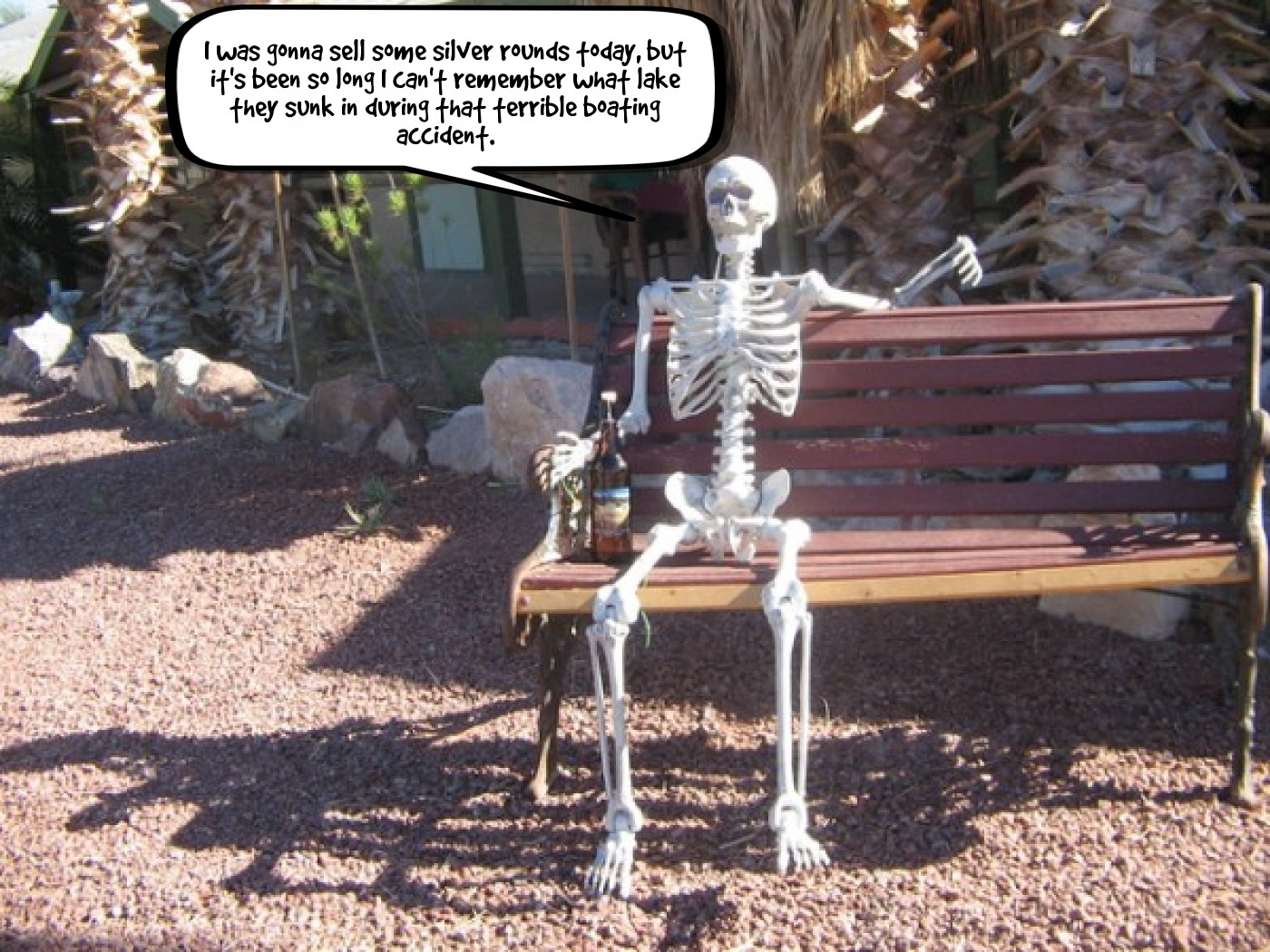 Skelly on a bench 8-18-2020.jpg