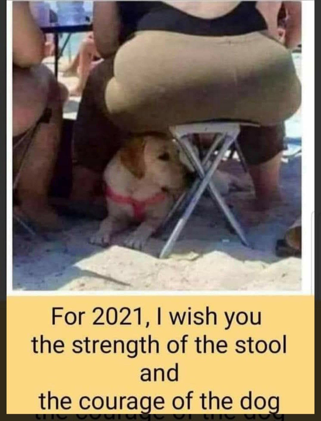 strength of the stool.jpg