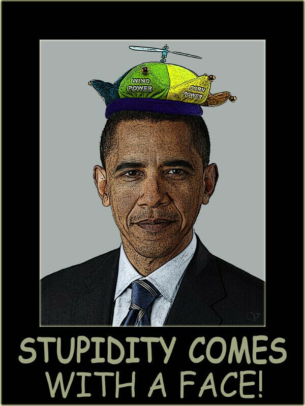 STUPIDITY COMES WITH A FACE!.jpg