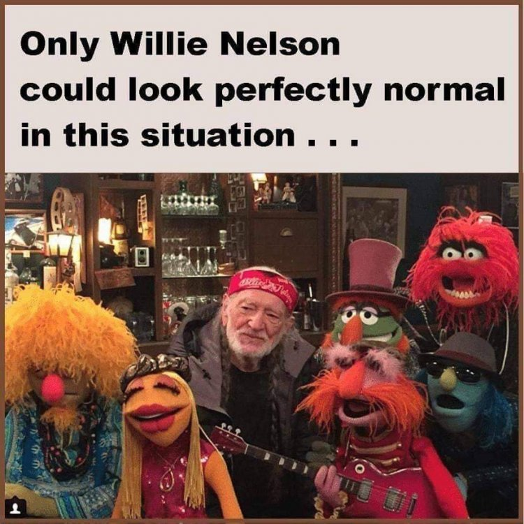 willie and muppets.jpg