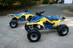 MY QUADS 022 (Medium).jpg